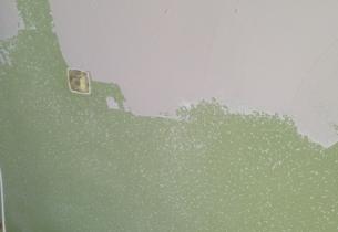 Pintura y Alisados gotele